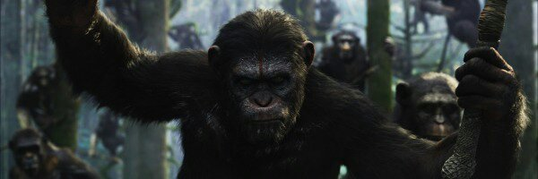 wpid-dawn-of-the-planet-of-the-apes-caesar-slice1.jpeg