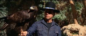 Billy Jack and Bird of Prey