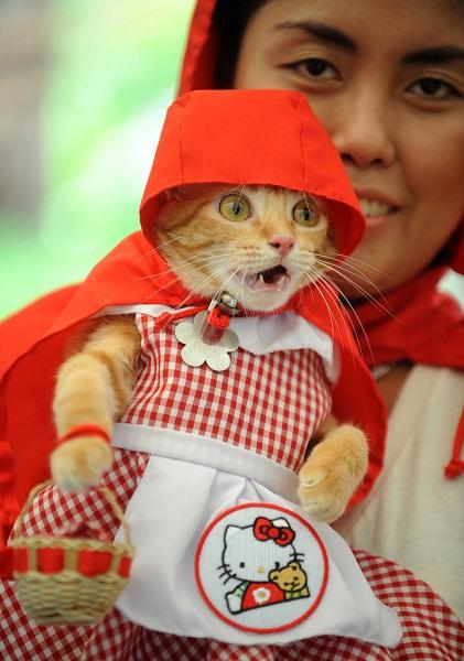 Little-Red-Riding-Hoodsm