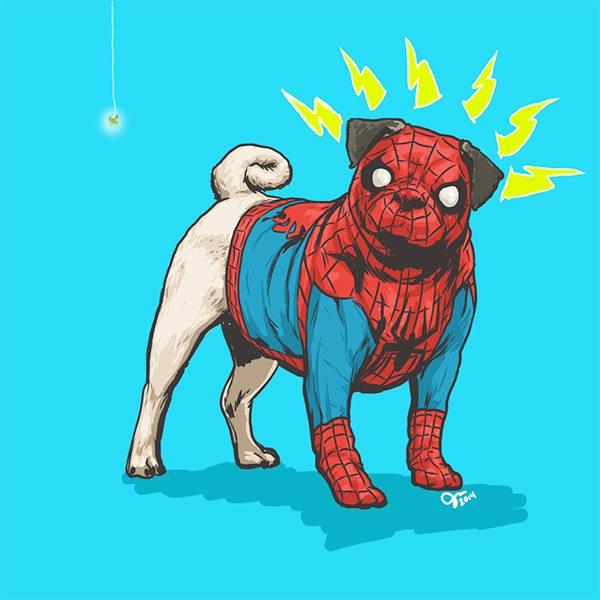 spider-dog