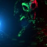 The Neon Dead 7