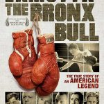 bronx-bull-1