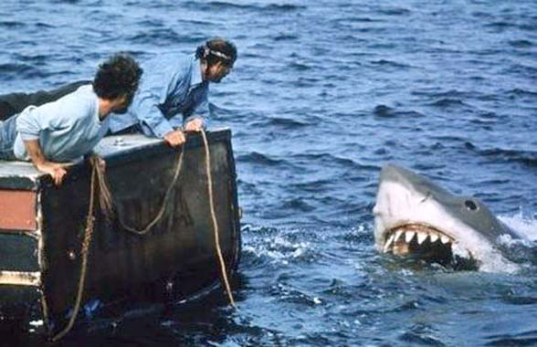 bruce the shark in Jaws