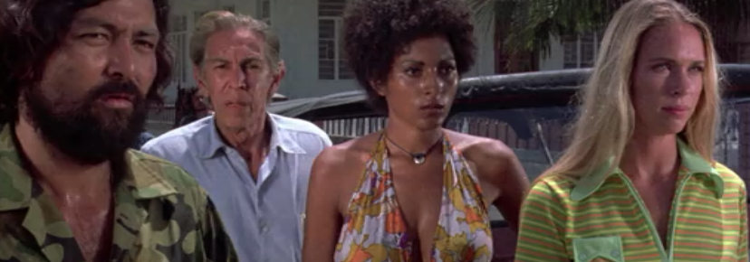 Why Did I Watch Black Mama, White Mama?: From a