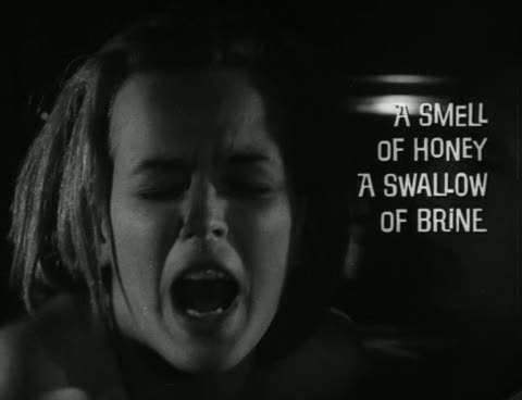 A Smell of Honey A Swallow of Brine _1966_